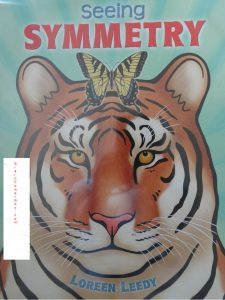 book cover of Seeing Symmetry