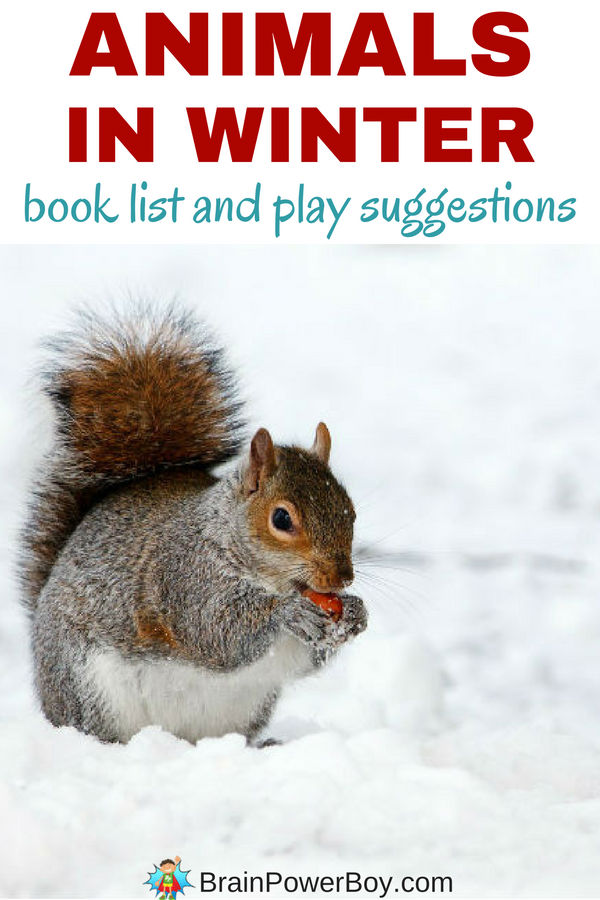 Wonderful animals in winter books as well as play and learning ideas.