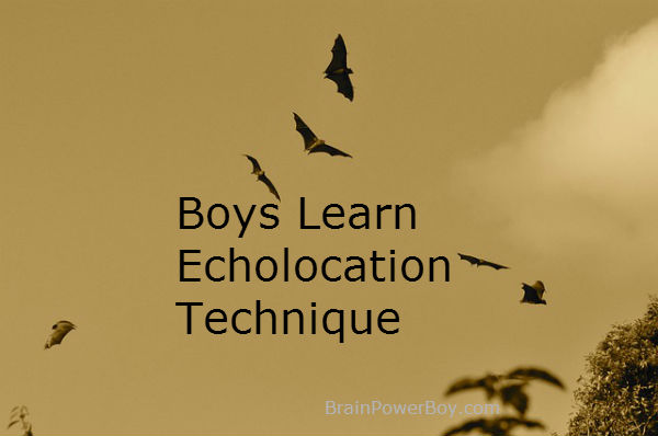Boys Learn Echolocation Technique