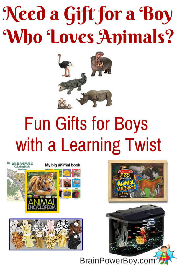 Experiences Plus Animals Gift Guide for Boys
