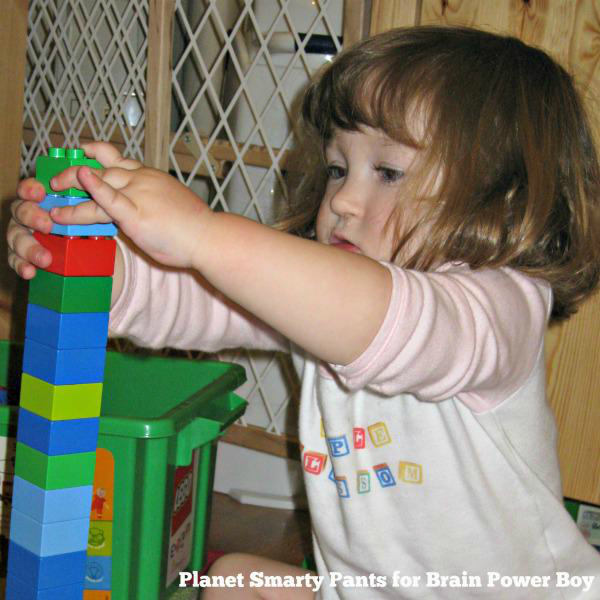 Should you buy DUPLO Bricks for toddlers and preschoolers?