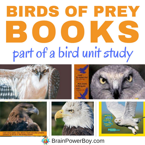 Don't miss this list of bird of prey books. We picked the very best titles to help your learn all about these magestic birds. Click to get the details and to see the unit study on birds as well.