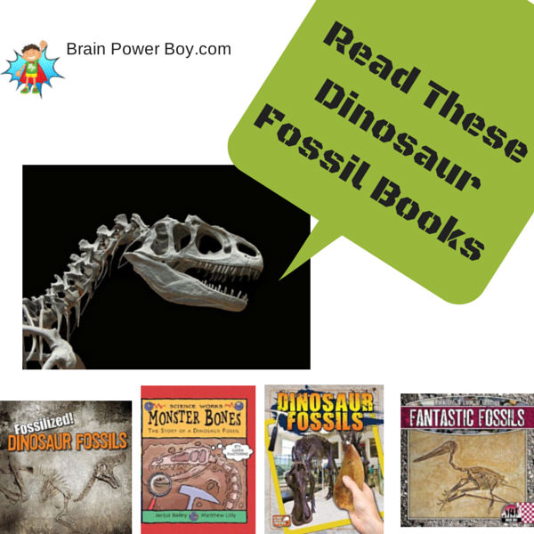 Dinosaur Fossils: Best Books for Boys