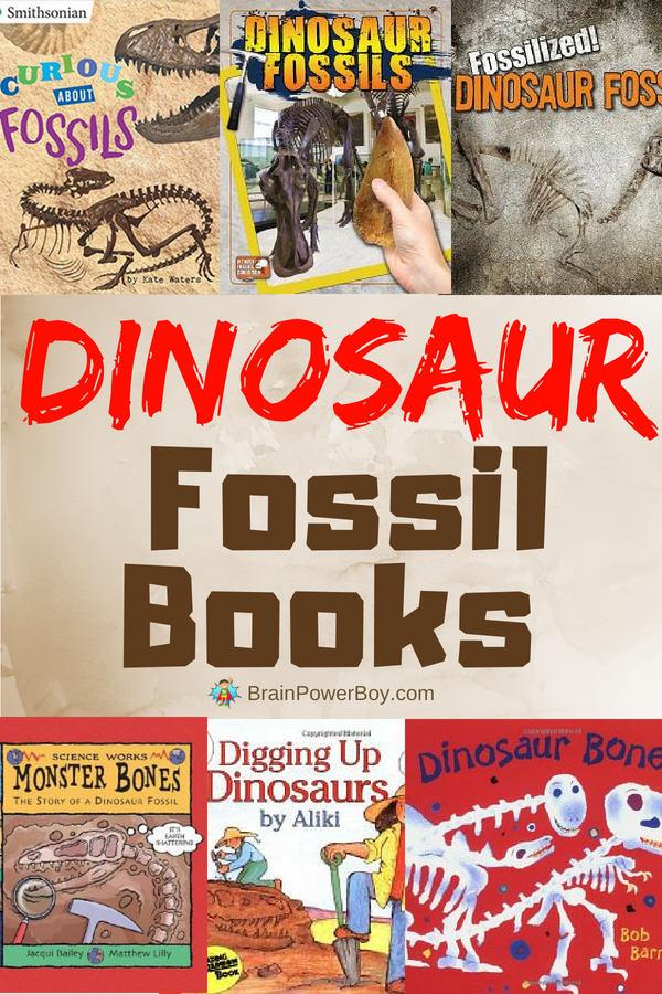 The best books on dinosaur fossils!