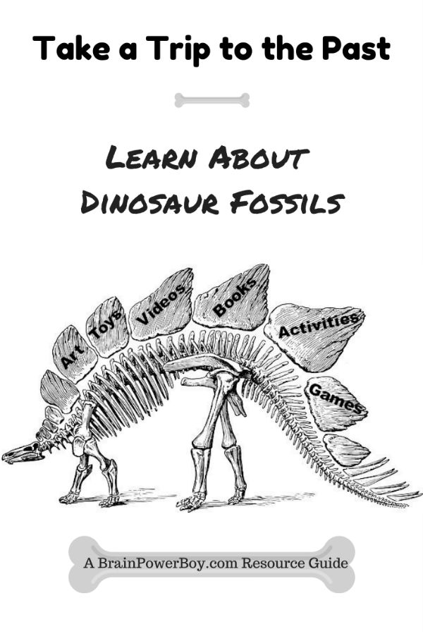 Dinosaur Fossils Unit Study with games, videos, art, toys, books, activities and more.