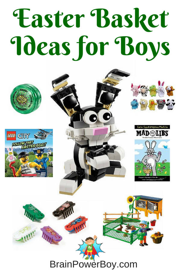 Need an Easter Basket Gift for a special boy in your life? Get Great Easter Basket Ideas for Boys that they will be excited to get. There are a lot of neat selections including many more than those shown on the image. Click to see them all.