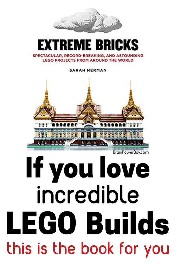 Extreme Bricks Book Review