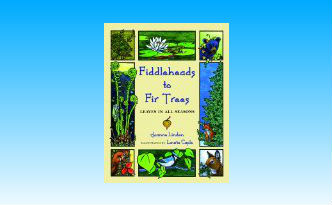 Fiddleheads to Fir Trees Book Review