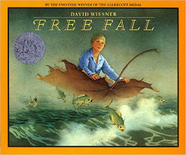 Free Fall a journey wordless picture book with fantasy and boy character