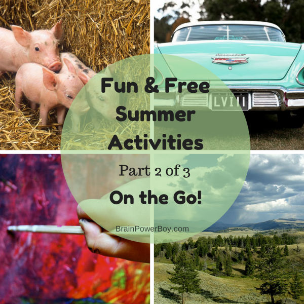 Fun and Free Summer Activities for Boys, Part 2 of 3, On the Go! This is not your usual list!  Great resource for getting boys out and learning new things. | BrainPowerBoy