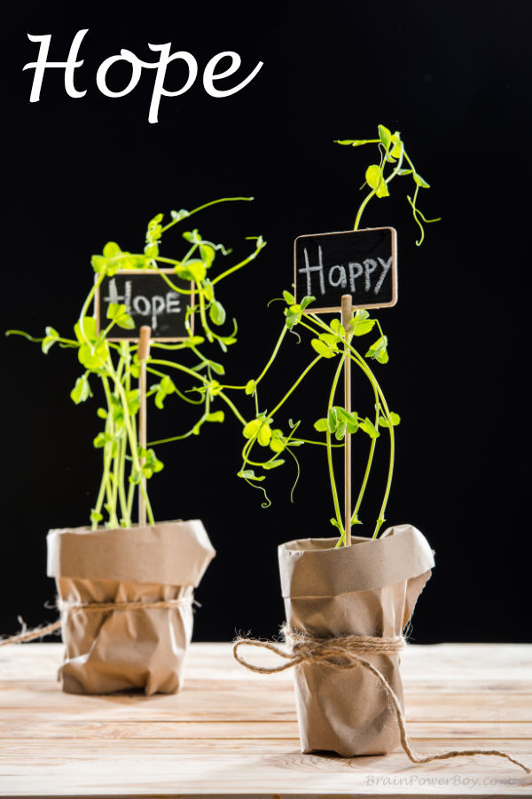 Plants with hope and happy markers