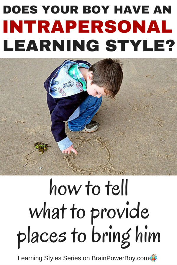 Does your boy have an Intrapersonal Learning Style? Find out in this article and see what you can provide to help him learn as well as places to bring him to honor his learning style.