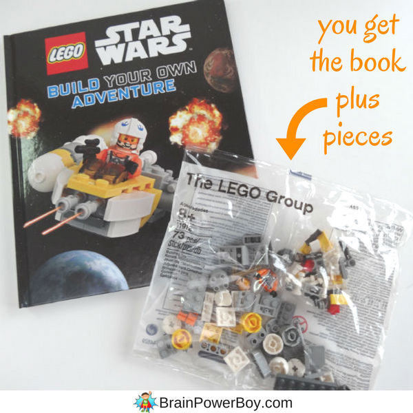 Get this DK LEGO Star Wars book! It comes with exclusive minifig and parts to build a starfighter too. (ad)