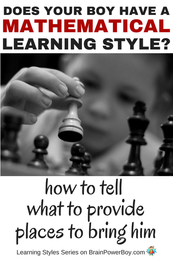 Do you want to help your boy learn? If so, take a look this series which delves into learning styles. Find out more about the Logical-Mathematical Learning Style, how to tell if your boy has it, what to provide him with, and places you can take him to honor the way he learns. You can help him! Click the picture to read more.