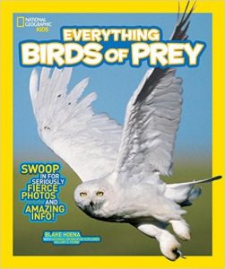 national-geographic-kids-birds-of-prey