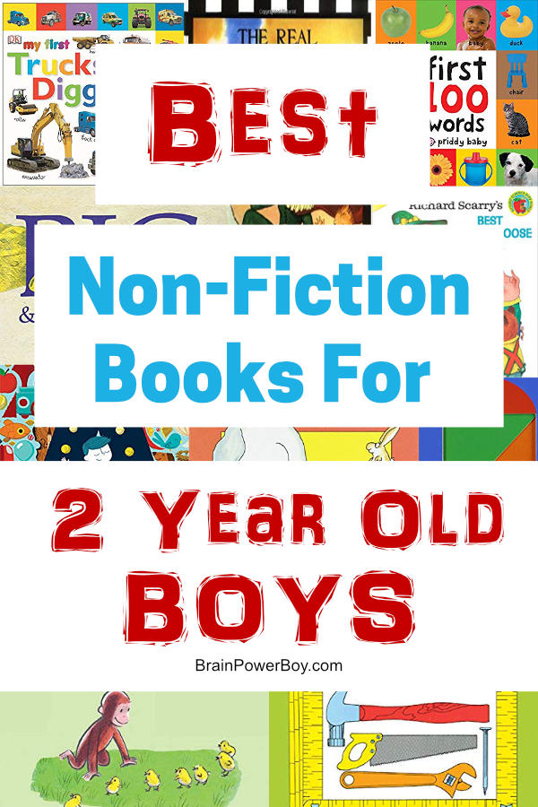 Non-fiction and concept books for 2 year old boys. If you need a gift or just want to get some great books for boys age two, this is the list you want to see!