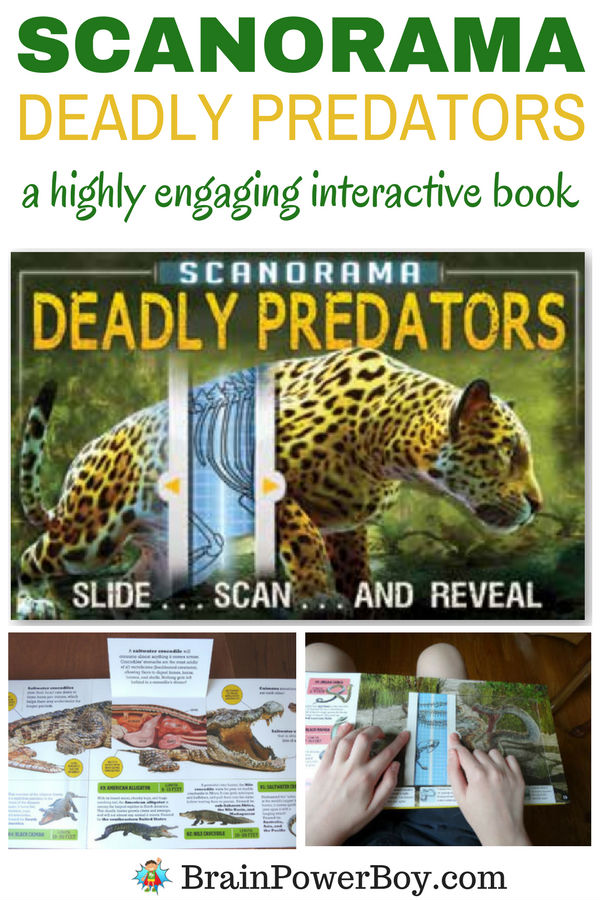 Don't miss the highly engaging interactive book Deadly Predators! Your kids are going to go crazy for the slide, scan and reveal. See all of the details by clicking now.
