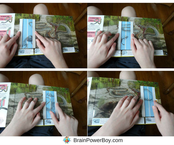Slide, scan and reveal! What a neat interactive book we found. Take a peak by clicking through to learn more about Deadly Predators and the other titles in the Scanorama Series.
