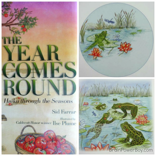 The Year Comes Round | Learn about Haiku and the Seasons | Book Review by BrainPowerBoy