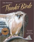 thunder-birds-natures-flying-predators