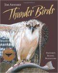 thunder-birds-natures-flying-predators