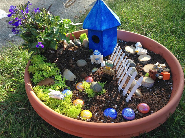 Star Wars Fairy Garden for Boys